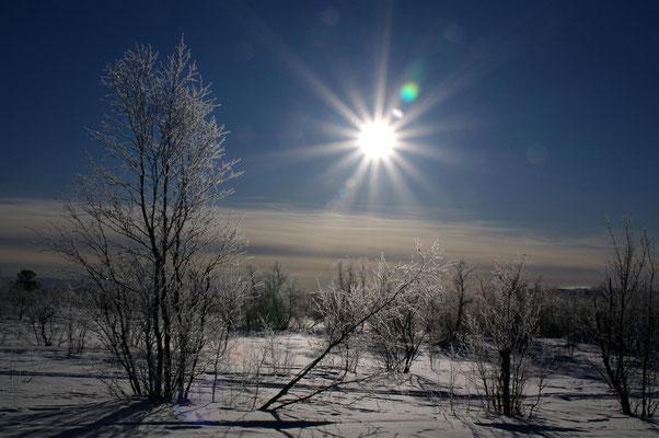 Winterlandschaft in Schwedisch-Lappland               © 2012 Stefan Pompetzki