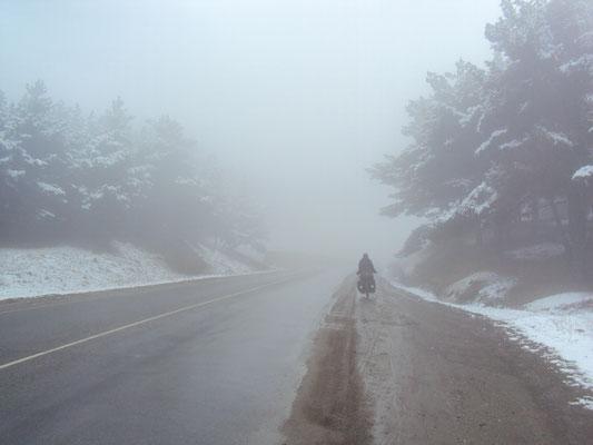 Les réjouisseances du brouillard