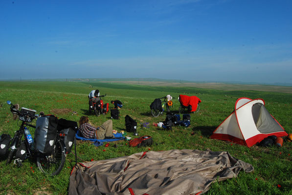 Les prairies kazakhs