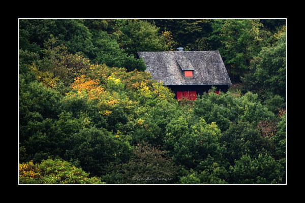 #38 die Hütte im Wald