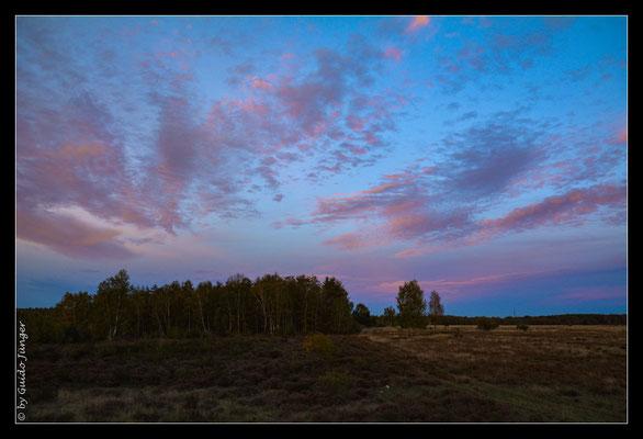 #057 Drover Heide