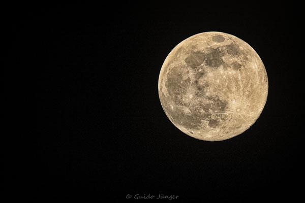 #087 April Moon
