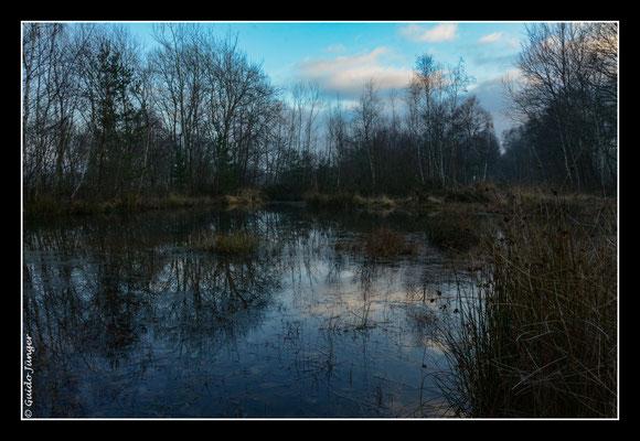 #079 Drover Heide
