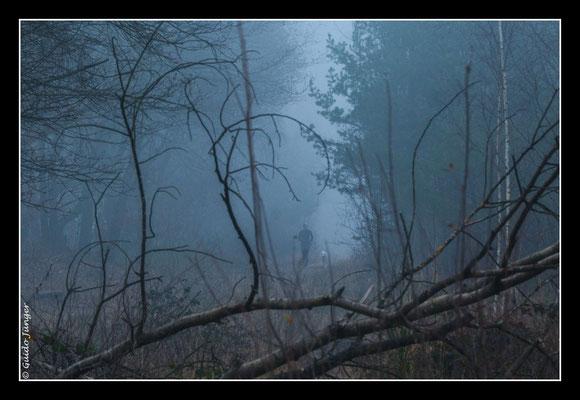 #081 Drover Heide