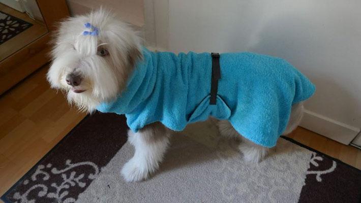 Hundebademantel von Hundeleinen-und-mehr