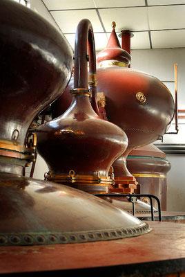 Destilleer installatie Bertrand
