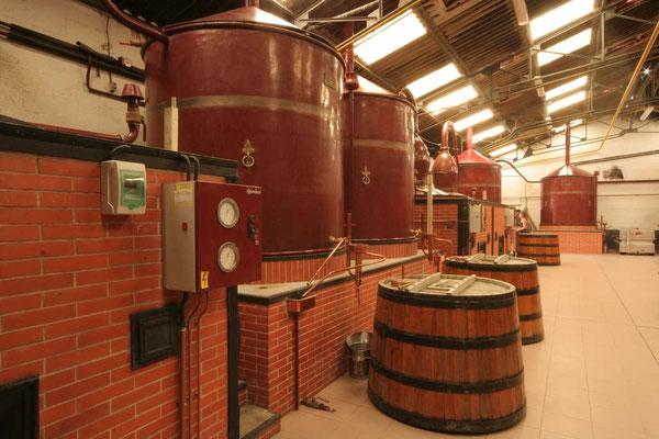 Destilleer installatie Maxime trijol