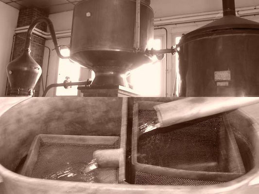 Destilleren Fradon