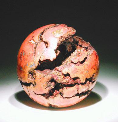 """""""Terra incognita 002"""" ronce de manzanita - dia 33 cm - 2005"""