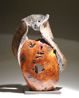 """""""Chimère"""" loupe d'orme - h60 cm - 2008"""