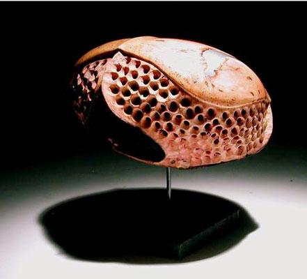 """""""Chimera 3"""" ronce de bruyère - h 15 cm - 2004"""