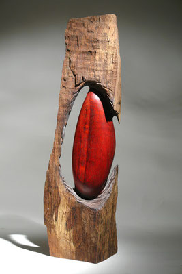 """""""Out of the wood"""" chêne - h 70 cm - 2008"""