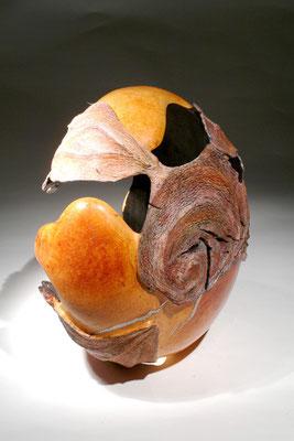 """""""Seed"""" ronce de bruyère - h 40 cm - 2005"""