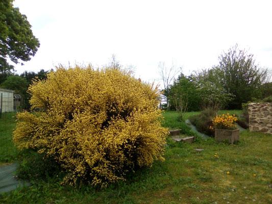 Le jardin clos (autre vue)