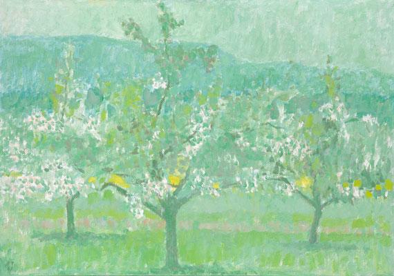 Blühende Bäume, 1967, Öl/Leinwand, 80 x 116 cm