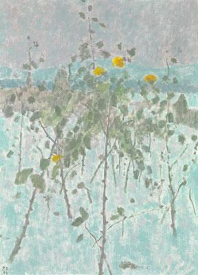 Rosen im Schnee, 1974, Öl/Leinwand, 100 x 73 cm