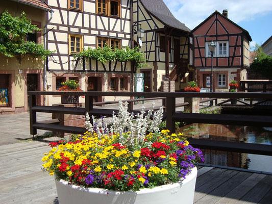 Annweiler, Museum unterm Trifels