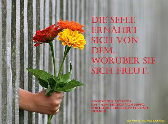 Augustinus Zitat,Zitate, Leben, Nachdenken, Seele baumelt, Seele baumeln lassen, Ganzheitliche Gesundheit