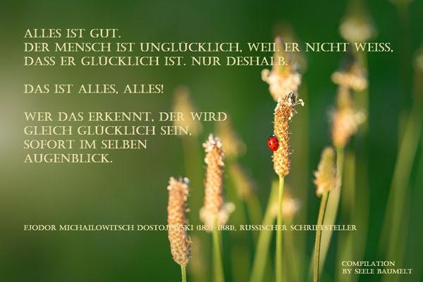 Dostojewski Zitat,Zitate, Leben, Nachdenken, Seele baumelt, Seele baumeln lassen, Ganzheitliche Gesundheit