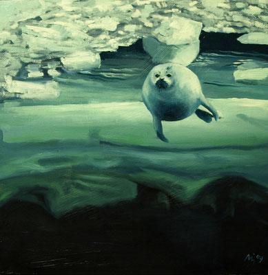Zeehond onder het ijs 25x25cm, olieverf op paneel