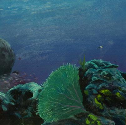 Onderwaterlandschap 25x25cm, olieverf op paneel