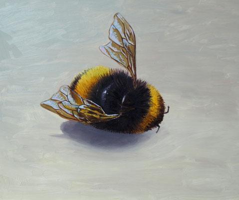 Bijensterfte 15x20cm, olieverf op paneel