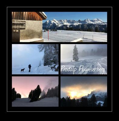 Prodalp Flumserberg, Schweiz 2020