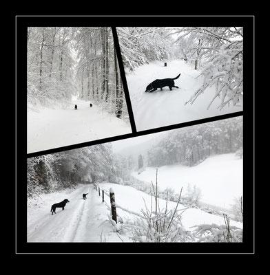 Lausen, Schweiz 2021
