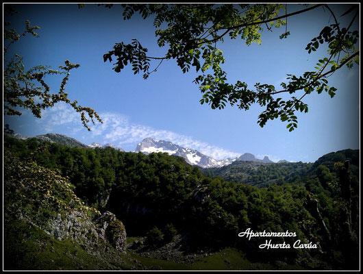 Parque Nacional Picos de Europa.