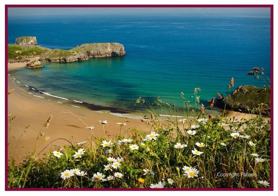 Playa Torimbia, Llanes.