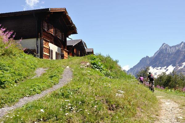 Mountainbiken im Lötschental
