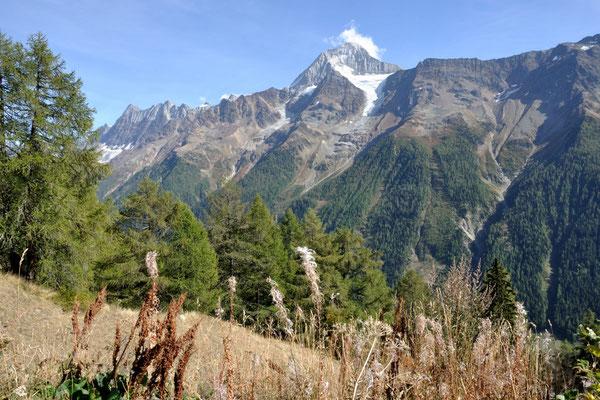 Ruhe, Entspannung und Natur auf der Lauchernalp, Blick auf das Bietschhorn