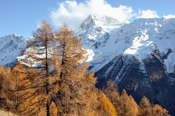 Wanderung im Herbstpanorama des Lötschentals