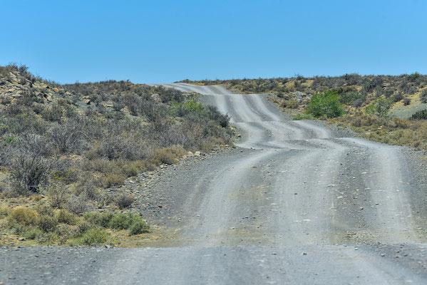 Up & Down auf dem Rückweg unseres Loops im Karoo NP