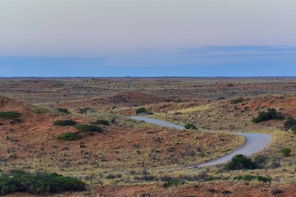 Typische Kalahari-Dünenlandschaft