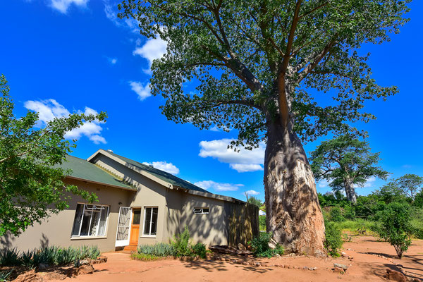 Baobab Hill Bush House