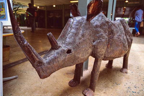 Rhino im 27 Boxes