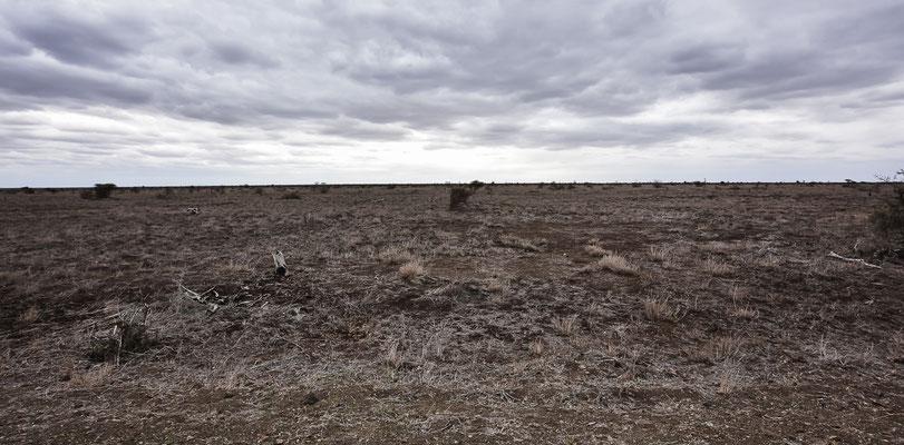 Große Dürre