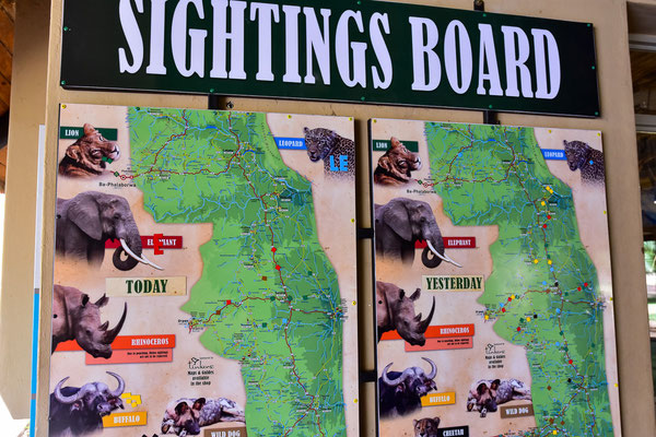Sightings Board im Letaba Camp