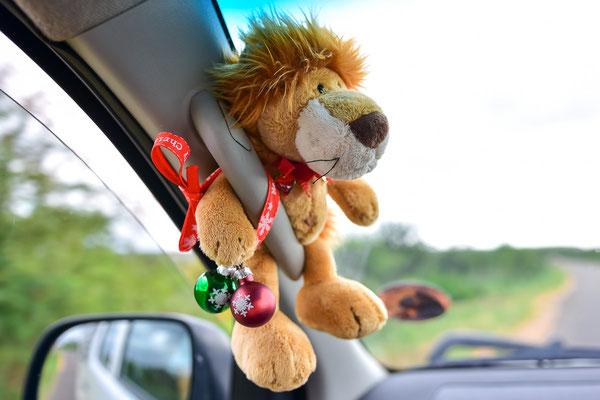 Löwi wurde weihnachtlich geschmückt