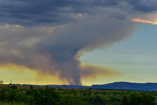Rauch hinter den Reserve-Grenzen von der umliegenden Holzwirtschaft