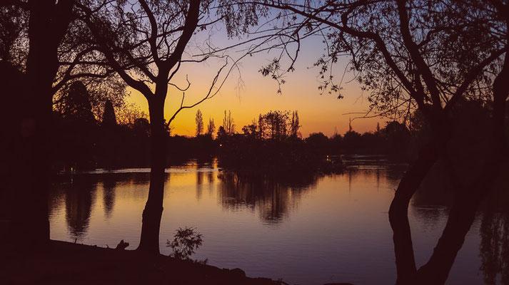 Sonnenuntergang-Spaziergang.