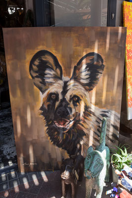 Was für ein tolles Wilddog-Bild!