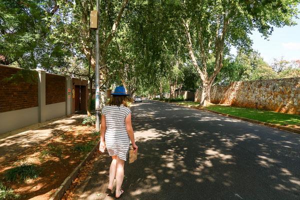 So schön grün ist Johannesburg