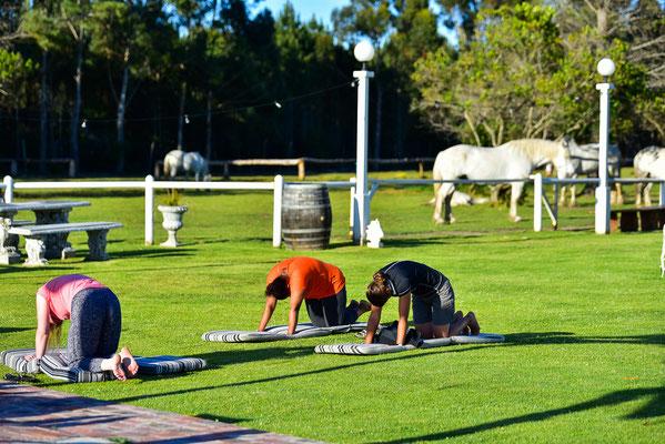 Morgen-Yoga um 6:30 Uhr mit Maria, Fabienne und Anika