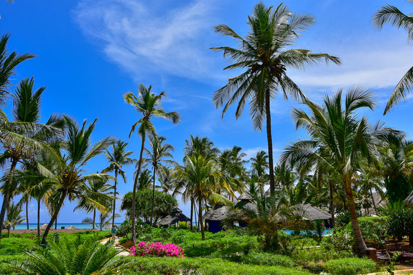 Breezes Beach Club
