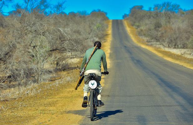 Mit dem Fahrrad unterwegs im Krüger Park