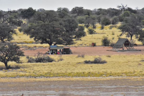 Sicht auf Campsite 2 über Mpayathutlwa-Pan