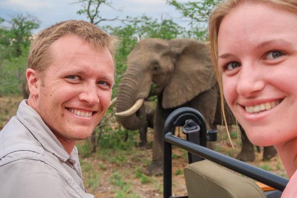 Mitten in der Elefantenherde