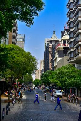 Johannesburg ist eine sehr grüne Stadt, auch im Zentrum